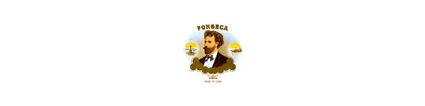 Buy Cigars from Cuba Fonseca at cigars-online.nl