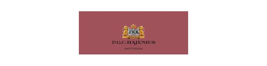 Buy Cigars from Dutch Hajenius at cigars-online.nl