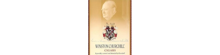 Buy Cigars from Dominican Winston Churchill at cigars-online.nl