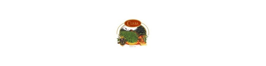 Buy Cigars from Cuba Cuaba at cigars-online.nl