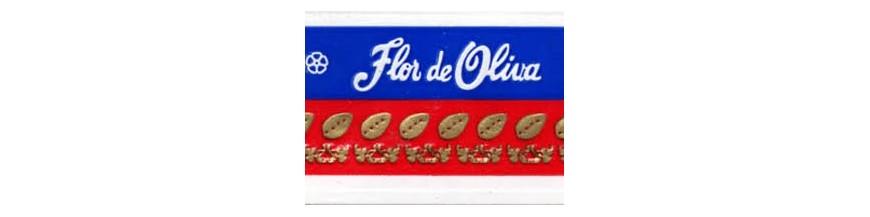 Buy Cigars from Nicaragua Flor de Oliva at cigars-online.nl